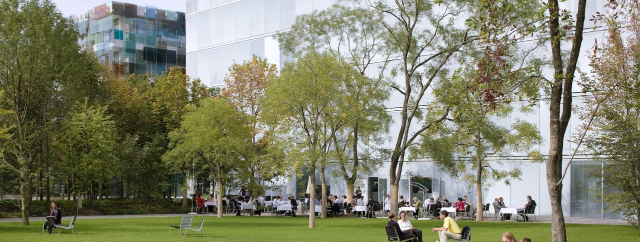People sitting at the campus